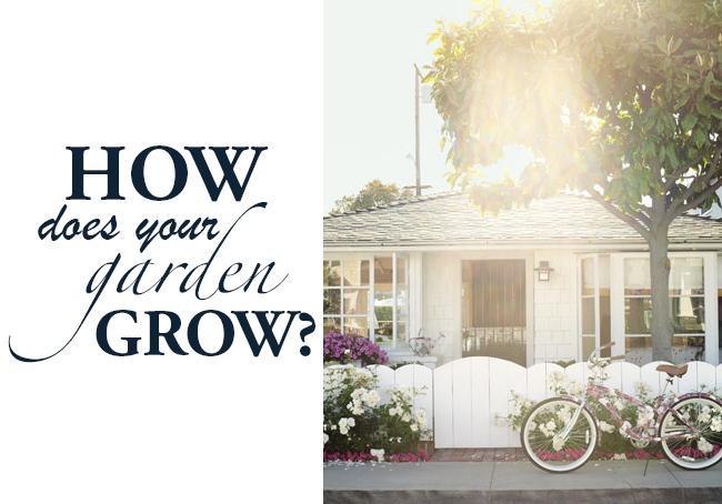 How-Does-Your-Garden-Grow-DiCorcia-Design-2