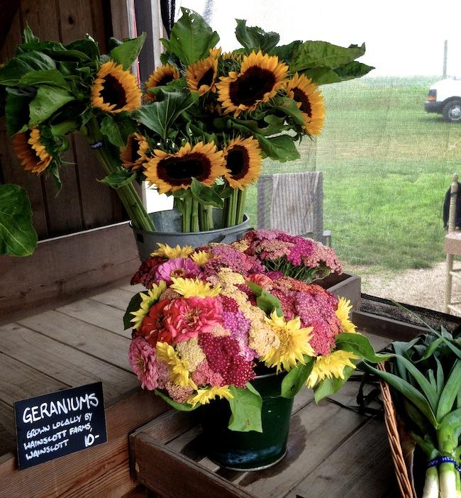 Balsam-Farms-Amagansett-NY-Hamptons-DiCorcia-Interior-Design