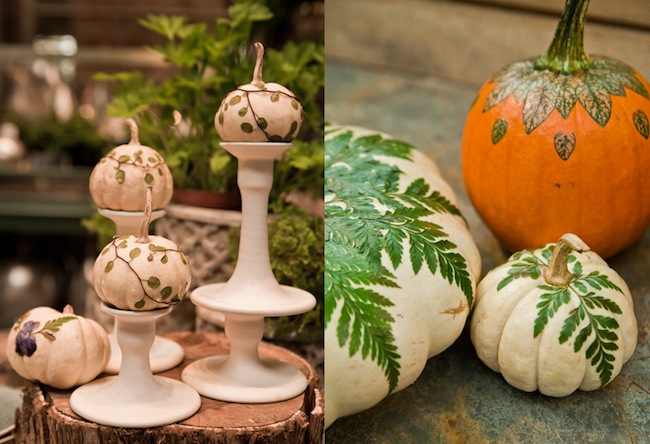Terrain-Botanical-Pumpkins-via-DiCorcia_interior-Design-NY-NJ