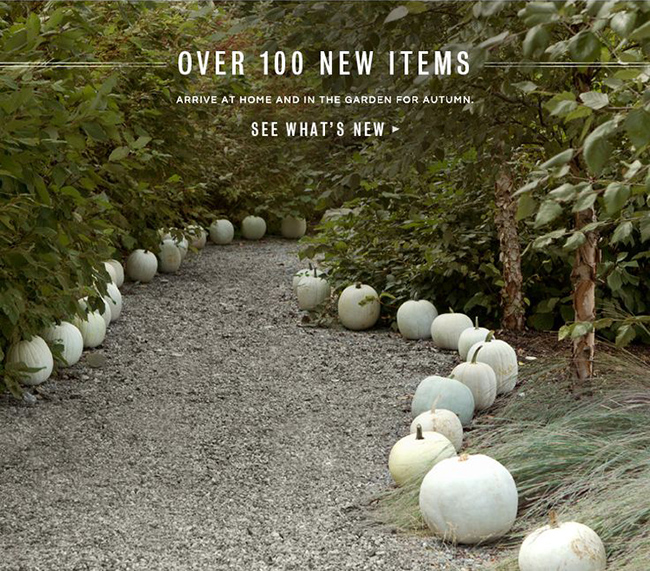 Pumpkin-Walkway-via-DiCorcia-InteriorDesign-NY-NJ