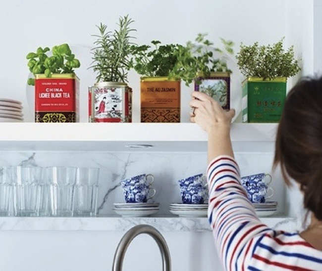 Tea-Tin-Herb-Box-Garden-via-DiCorcia-Interior-Design-NY-NJ