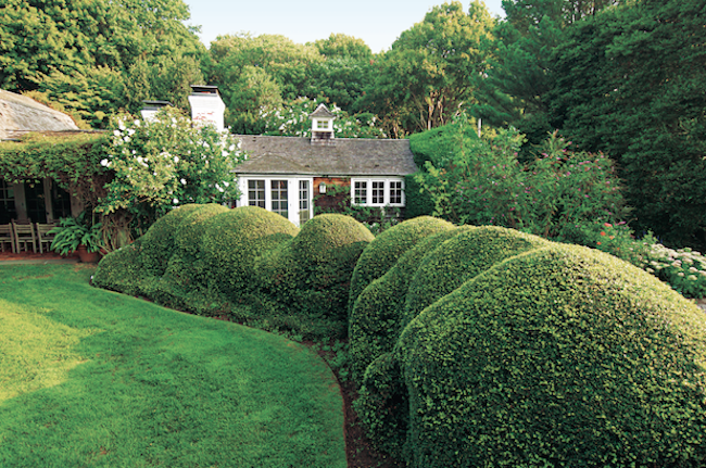 HBX-HAMPTONS-GARDENS-BOOK.jpeg