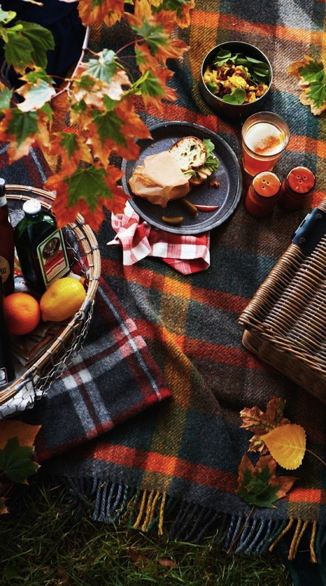 Fall-picnic-Decorating-with-Pumpkins-Outside-via-DiCorcia-Interior-Design-NY-NJ