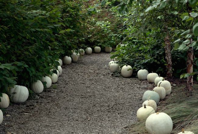 Decorating-with-Pumpkins-Outside-via-DiCorcia-Interior-Design-NY-NJ